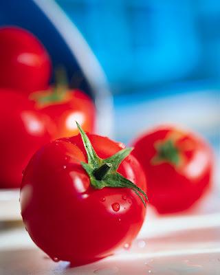 Jitomates - Tomates - Tomatoes - Fotos de Stock