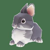 papertoyart-canon-animais-coelho.png (295×295)
