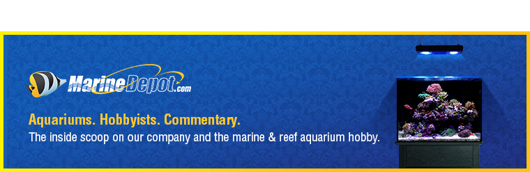 Marine Depot Blog