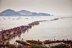 Terbelahnya Laut Jindo Korea