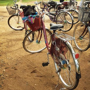 Cycling around Polonnaruwa