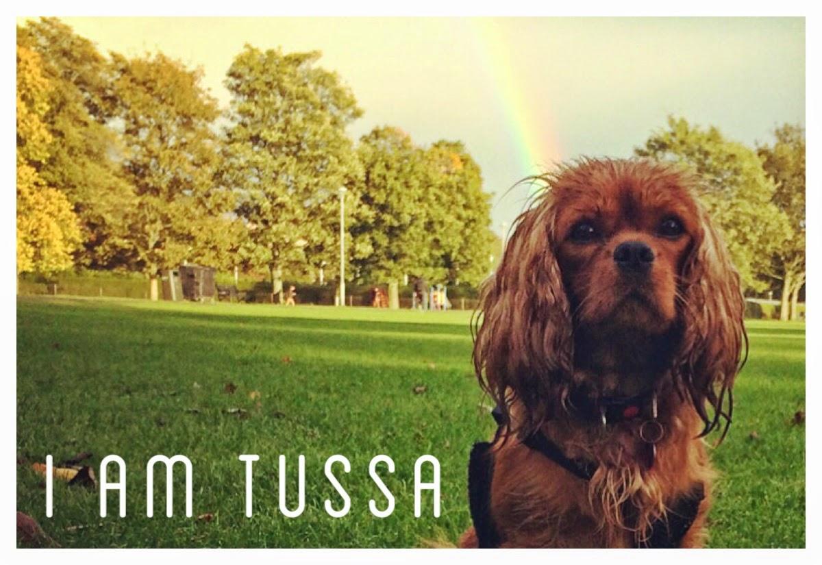 TUSSA