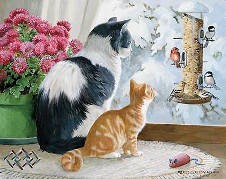 Смешные и просто красивые фотографии кошек 136 фото