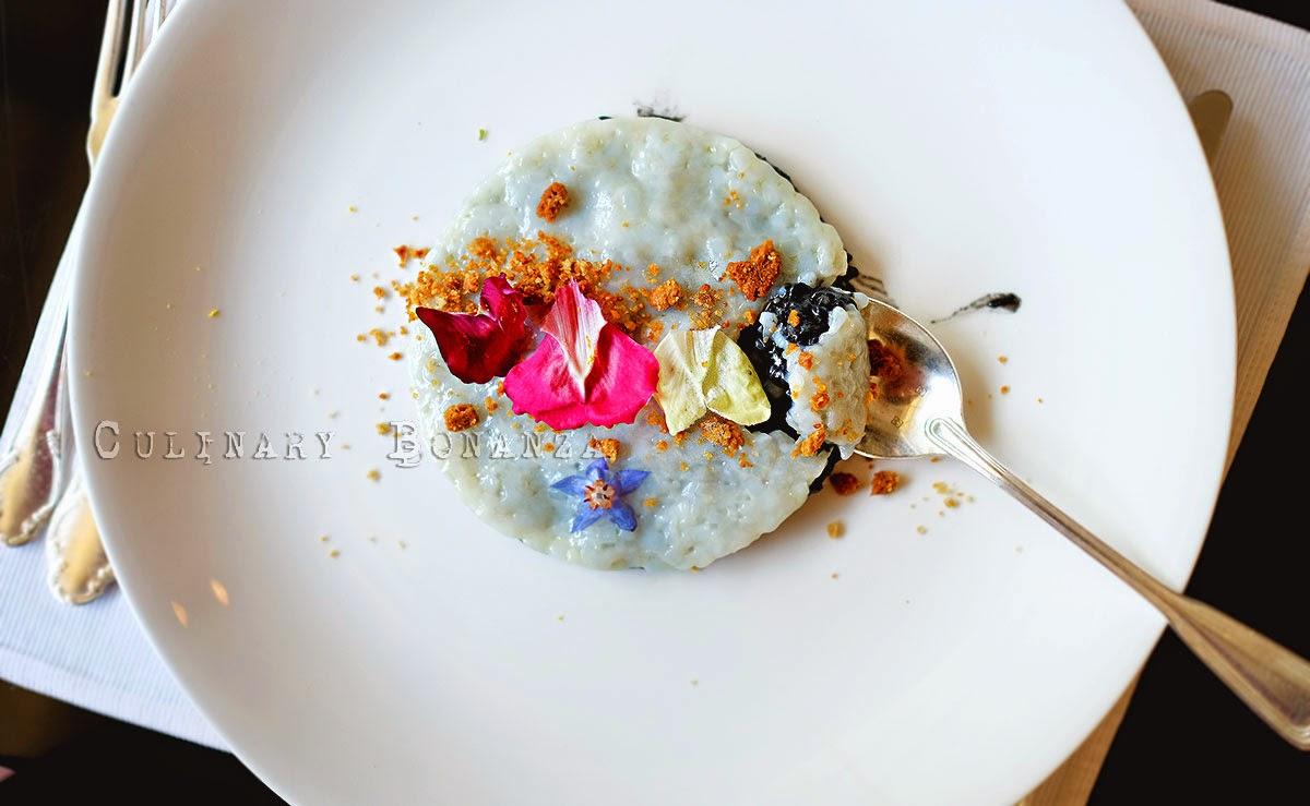 Squid ink risotto and tartare of calamari