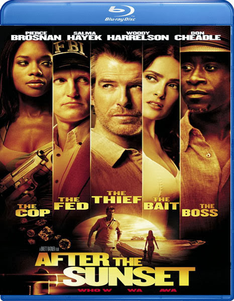 After the Sunset 2004 Hindi Dubbed Dual BRRip 300mb