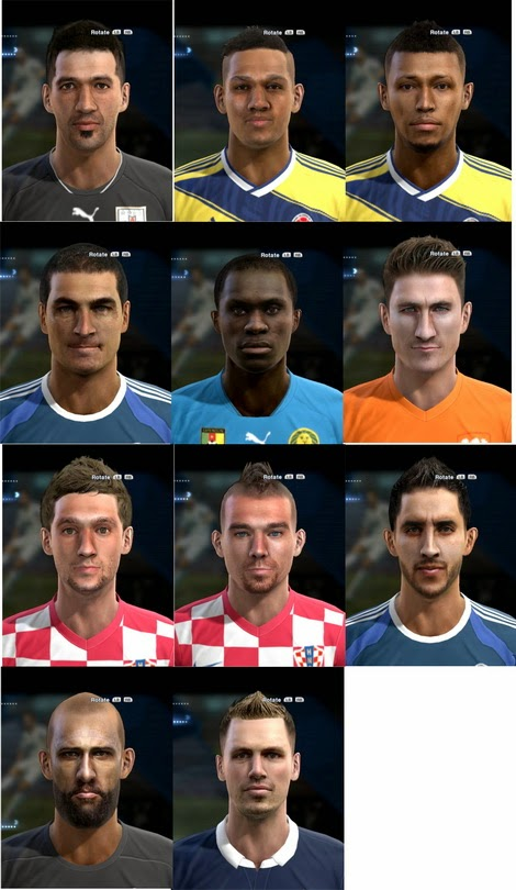 PES 2013 World Cup Facepack by bradpit