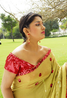 Meera-Jasmine-hot-in-saree-3