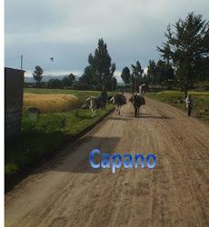 Imágenes de Capano