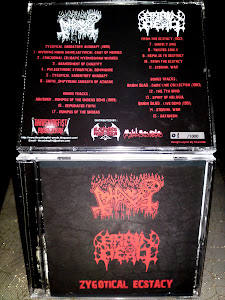 ABHORER/BRAIN DEAD-split CD