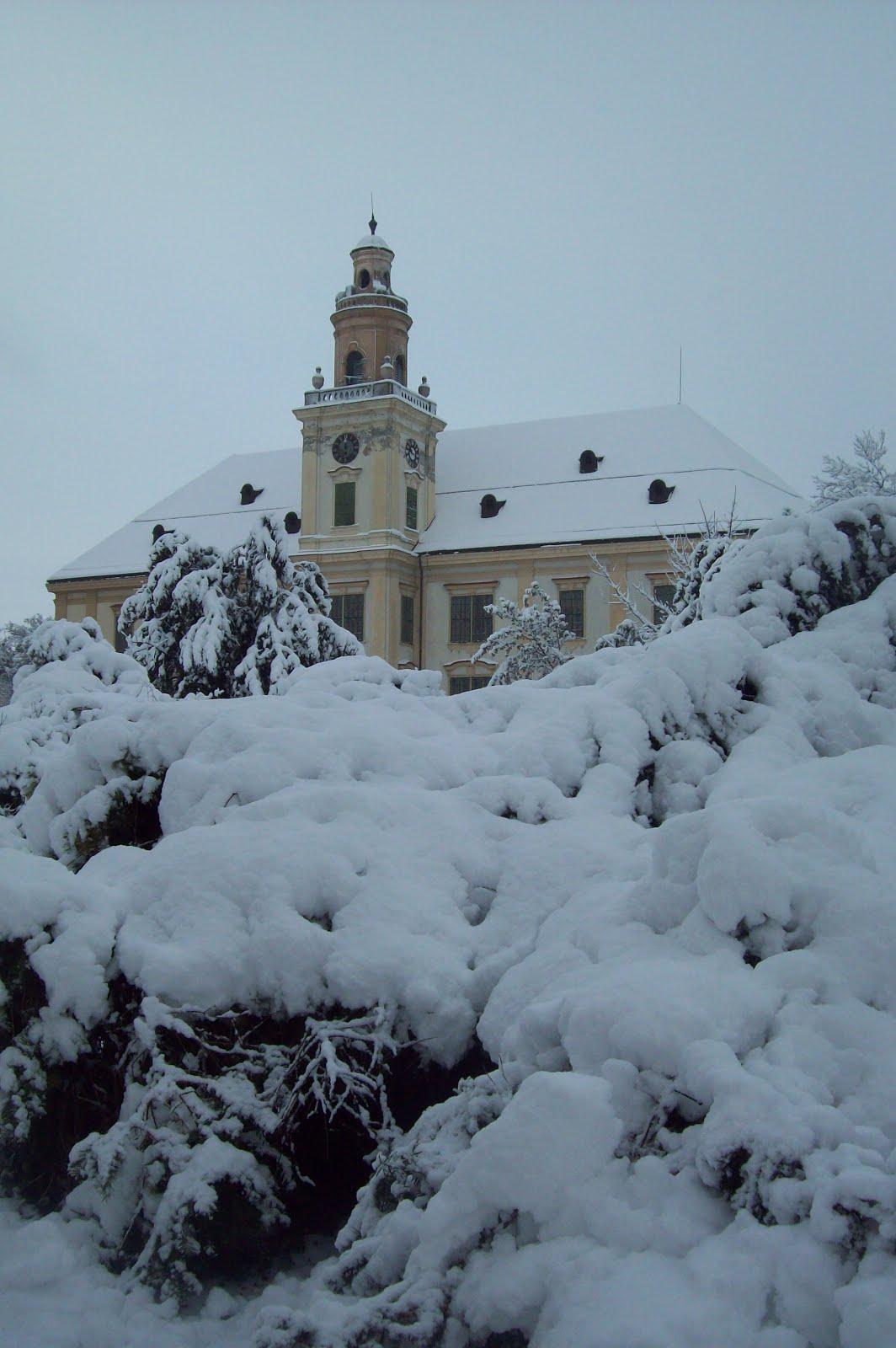 Zima 2015./16.
