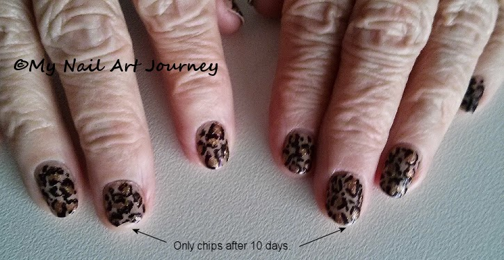 My Nail Art Journey Amazing Results From Last Mani