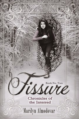 https://www.goodreads.com/book/show/20705918-fissure?from_search=true