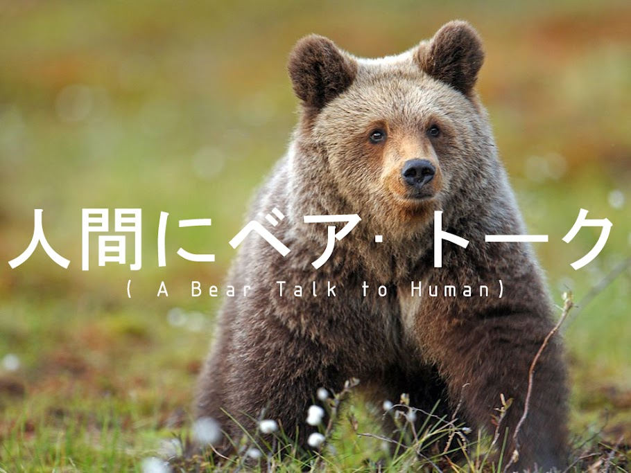 A Bear Talk to Human