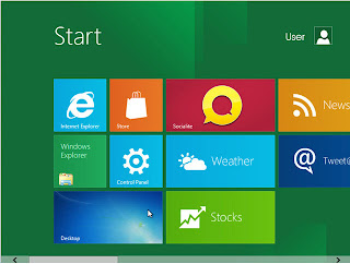 windows 8 in the Developer Preview version