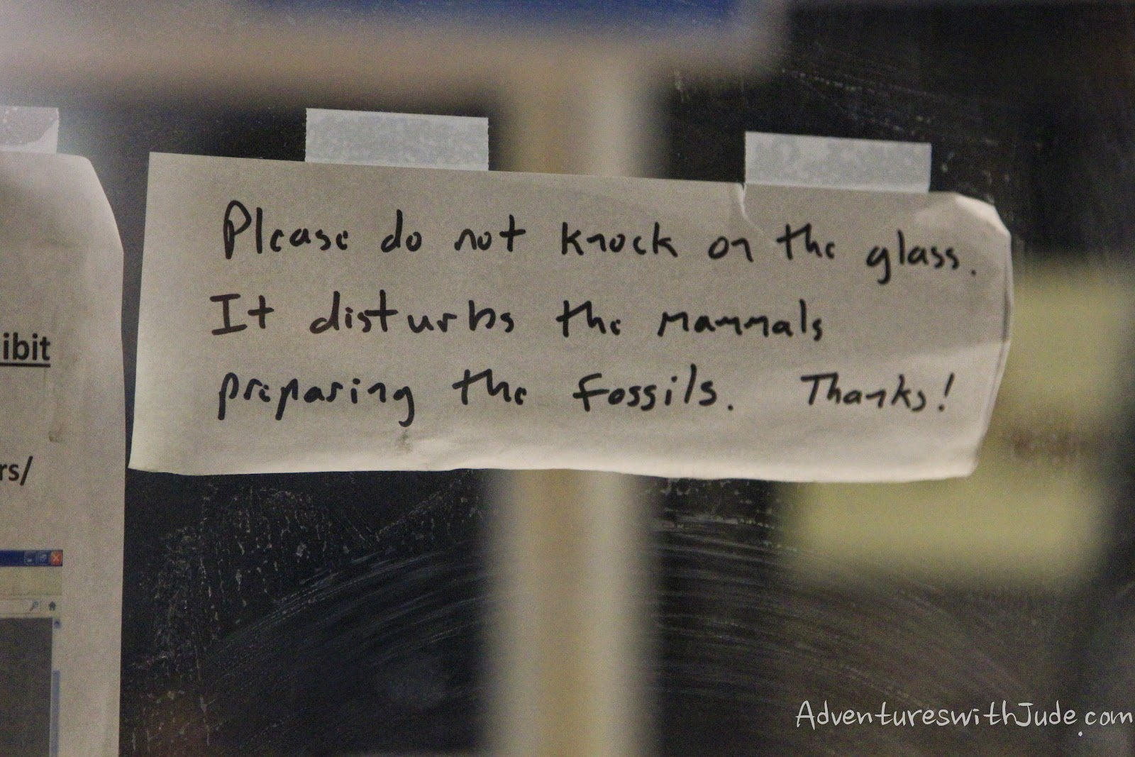 Paleontologists with a sense of humor.