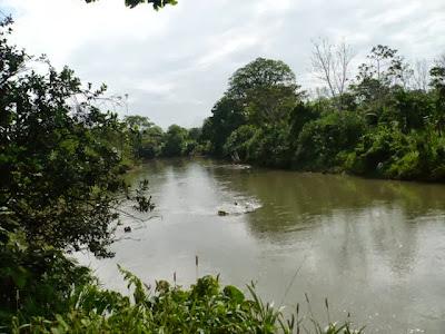 Río Matina