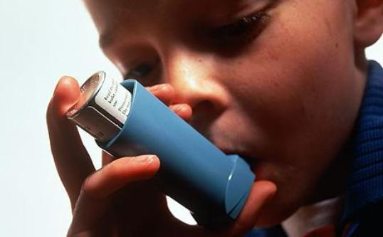 A Dog In The Home May Lower Kids' Odds For Asthma