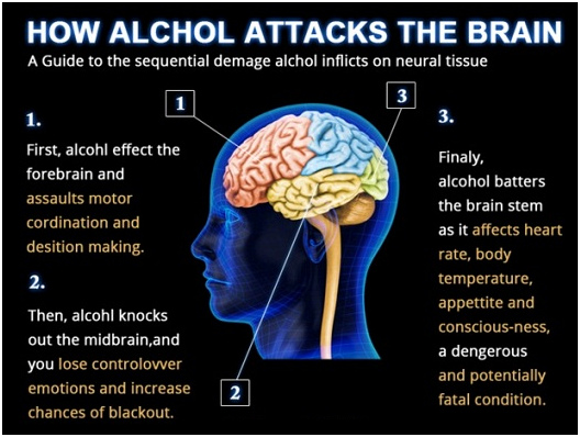 the cause and effects of alcoholism Alcohol's impact on your body starts from the moment you take your first sip while an occasional glass of wine with dinner isn't a cause for concern, the cumulative effects of drinking wine, beer, or spirits can take its toll read on to learn the effects of alcohol on your body a glass a day.
