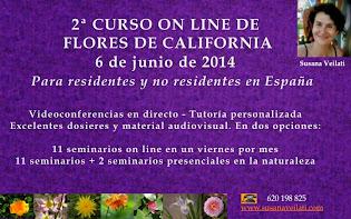 2014 FORMACIÓN EN FLORES DE CALIFORNIA (FES)