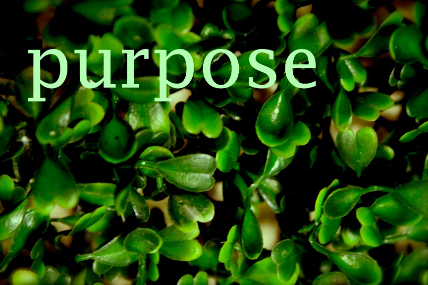 the writing and art of andrew thornton  weekly word  purpose
