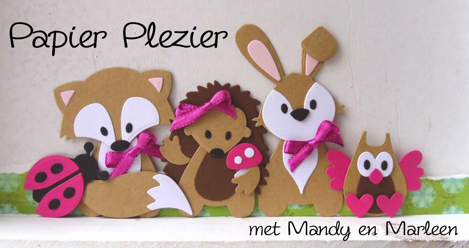 Papier Plezier met Mandy en Marleen