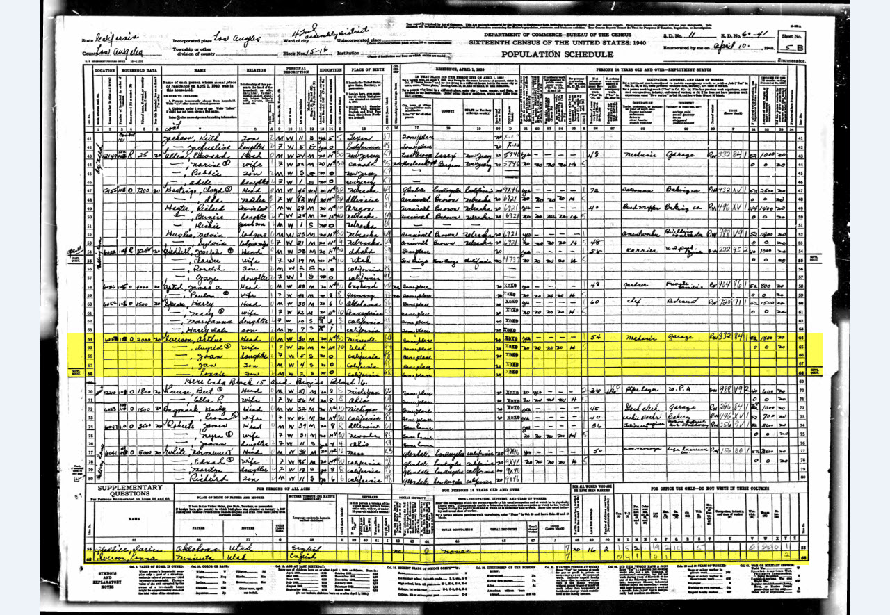 genealogy and the united states census essay