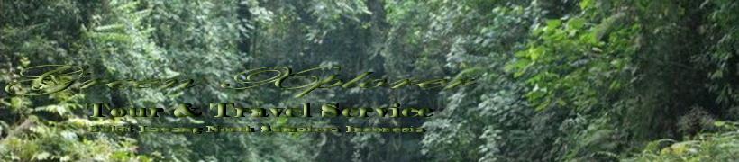 Green Xplorer Bukit Lawang Orang Utan Trek