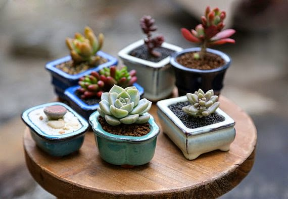 https://www.etsy.com/listing/179154066/tiny-clay-glazed-pots-for-miniature?ref=favs_view_5