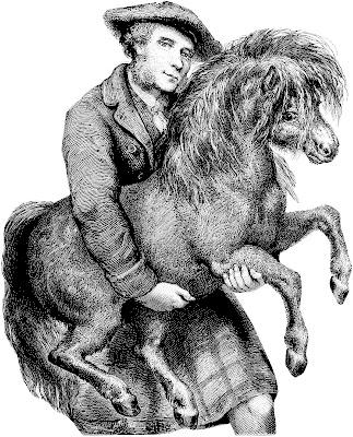 Scotsman, kilt, Shetland pony