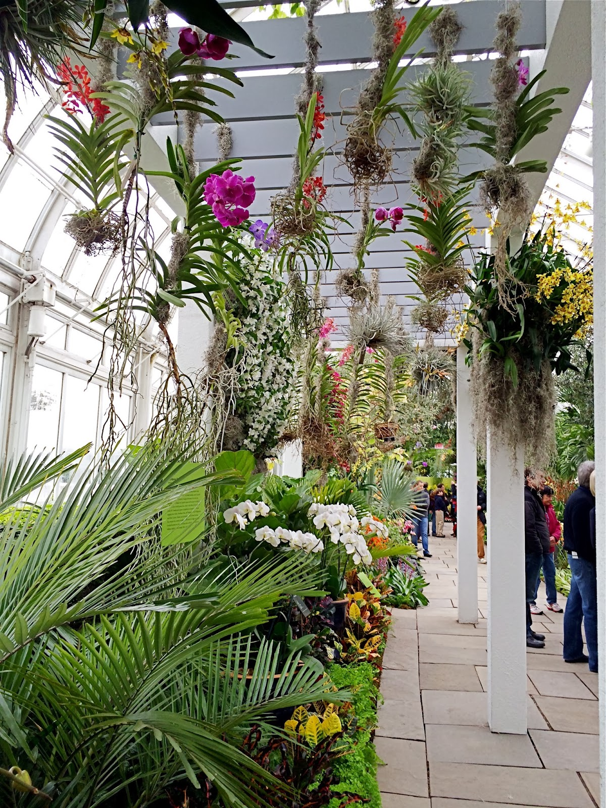 Nyc Nyc New York Botanical Garden 39 S Orchid Show Key West Contemporary