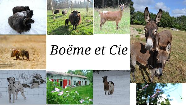 Boëme et Cie