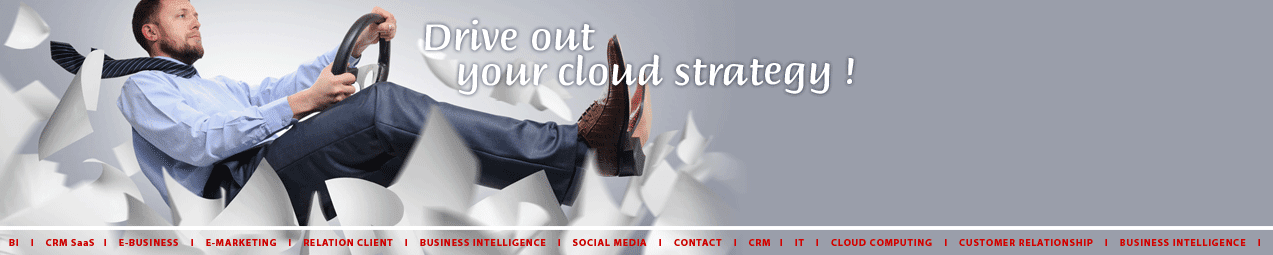 CRM, BI and Marketing - Le blog d'Aryvart - Drive out your cloud strategy !