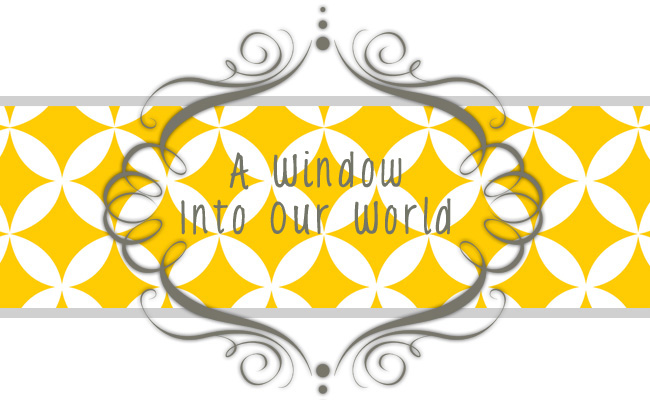 A  Window Into Our World. . .