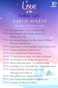 Blog Tour - Love at the Northen Lights