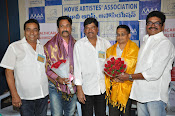 Maa Association press meet photos-thumbnail-16