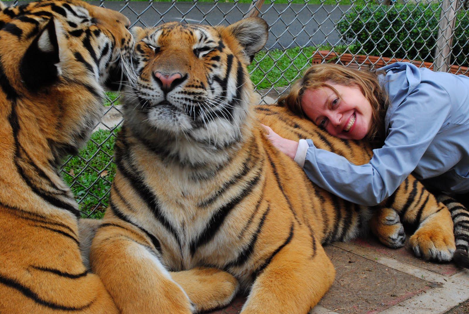 Animal Adventures: Tiger Kingdom - Thailand - 2010