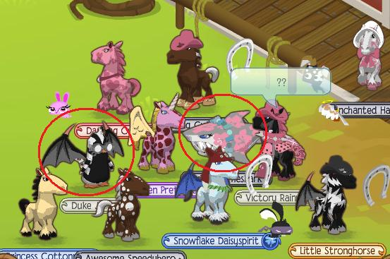 how to get adopted in animal jam