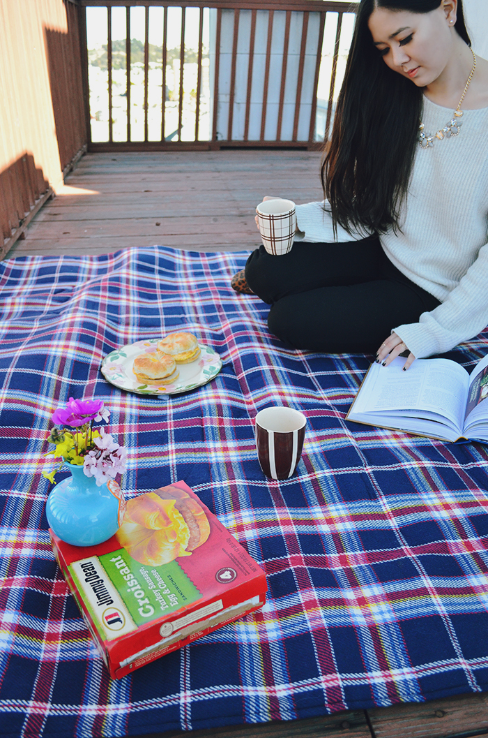 sf picnic