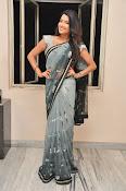 Jyothi seth sizzling saree photos-thumbnail-1