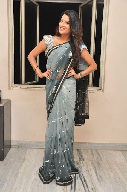 Jyoti Sethi in Sizzling Saree and Blouse actress from movie Where iS Vidyabalan