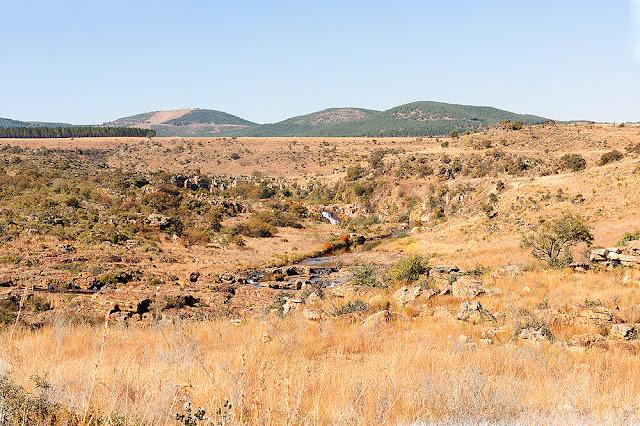 inverno Sudafricano brullo e secco sulla catena montuosa del Drakensberg