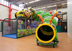 Themed Indoor Playground