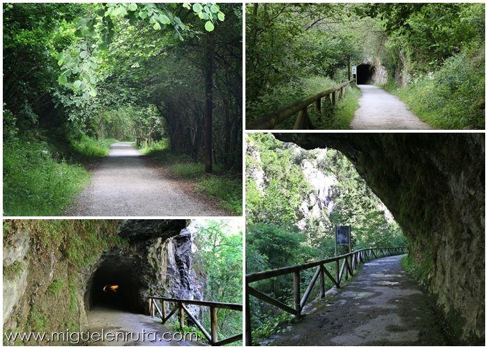 Senda-del-Oso-Asturias-Turismo-4