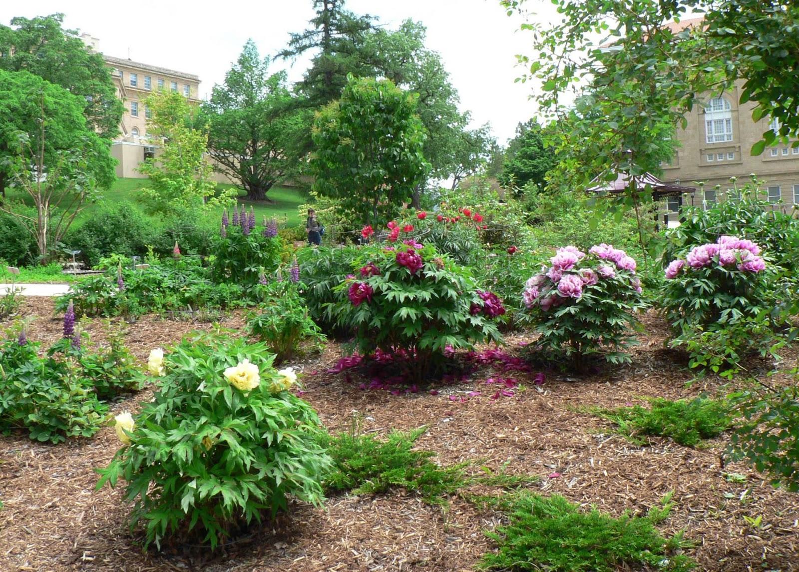 visit my garden public gardens