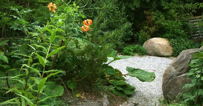 Renato photoblog angoli di giardino for Foto angoli giardino