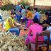 Donan 22.000 espigas para construir altar revestido de maíz