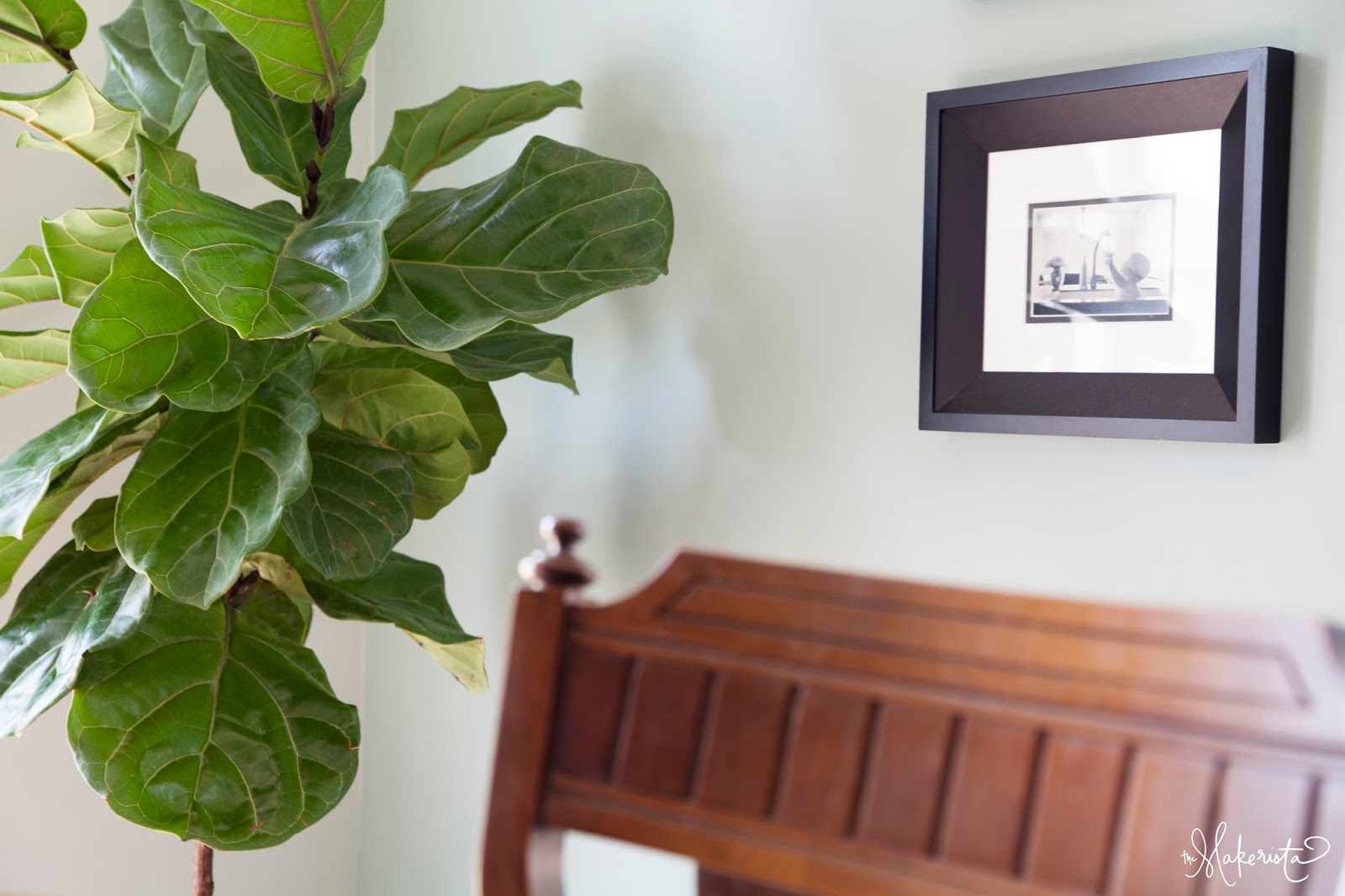 The makerista making a home adding easy and affordable houseplants to your space - Big leaf indoor plants ...