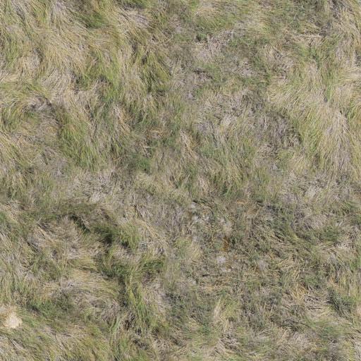 TR_Nat_Ground_Grass_1_Df.jpg