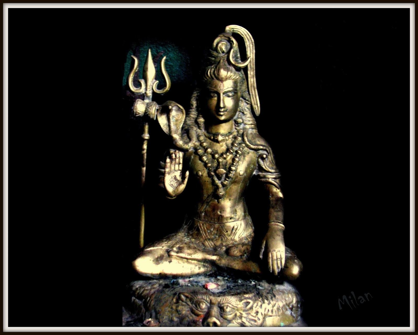 The Pursuit of Shiva