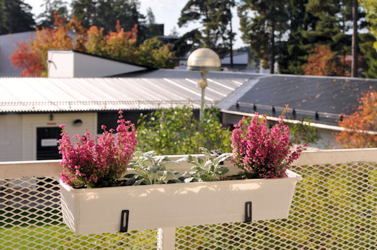 Balkon Herbst Winter : enis erlebnisse: herbst/winter-balkon